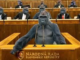 gorily dnes